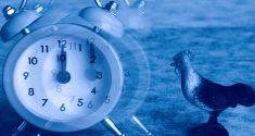Zeitumstellung auf die Sommerzeit: 60 Minuten sind keine Kleinigkeit