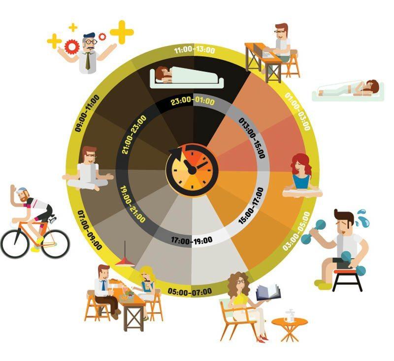 Chronobiology and Obesity