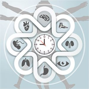 Chronobiology, Circadian Rhythms, Sleep