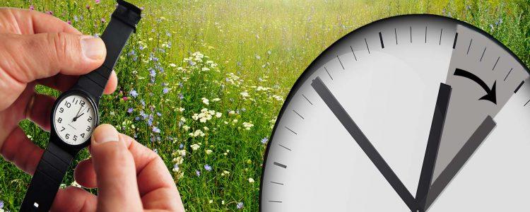 Sommerzeit: Wie beeinflusst der Uhrzeitwechsel unseren Biorhythmus?