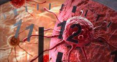 Neue Studien unterstützen die Idee, dass ein gestörter circadianer Rhythmus mit Krebs im Zusammenhang steht