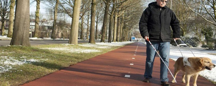 The Visually Impaired Are More Prone to Seasonal Affective Disorder (SAD) 1