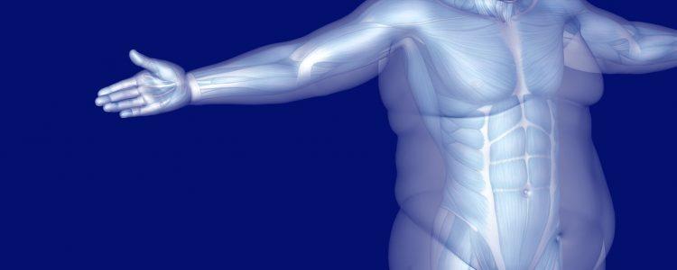 Eine neue Studie erforscht, wie sich blaues Licht auf Ihren Stoffwechsel auswirkt