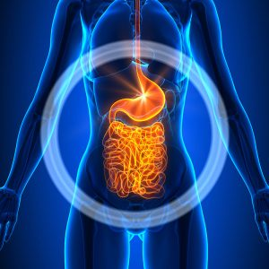 Stomach Bacteria and PTSD Linked in New Study