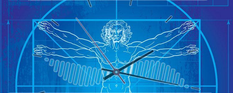 Die Stärke des circadianen Rhythmus könnte von diesem Schlüsselprotein gesteuert werden