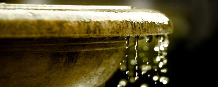 Melatonin May Be the Key to the Fountain of Youth 1