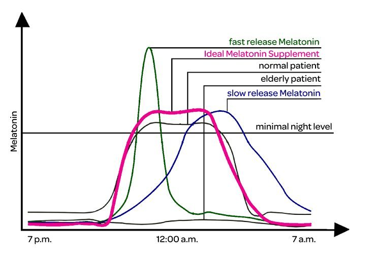 melatonin-chronobiology