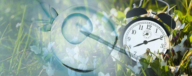 Umstellung auf Sommerzeit beeinflusst Erfolgsquote von künstlichen Befruchtungen