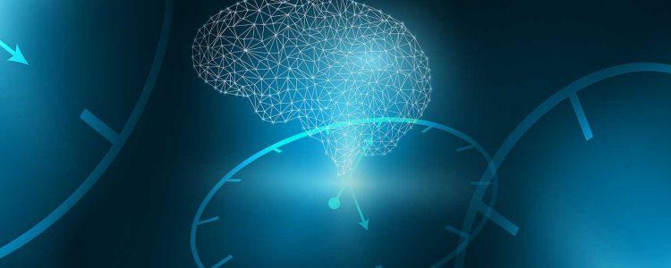 Your Internal Clock has a Helper: The Astrocyte