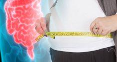 """Darmbakterien und Gewichtszunahme: Wie Darmbakterien die """"Herrschaft"""" über den circadianen Rhythmus Ihres Darms an sich reißen"""