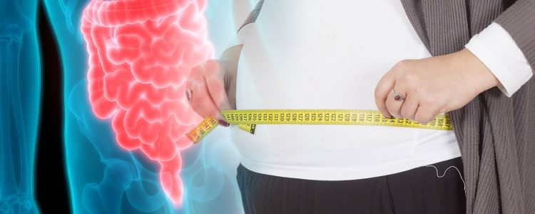 "How Gut Bacteria Can ""Hijack"" Your Intestinal Circadian Rhythm, Causing Weight Gain"