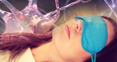 Schlaffördernde Gehirnzellen schalten jene Neuronen ab, die uns wachhalten