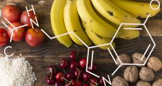Neue Erkenntnisse über die Rolle von Melatonin als Antioxidans