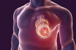 Discovered: There May Be a Best Time of Day for Atherosclerosis Treatment