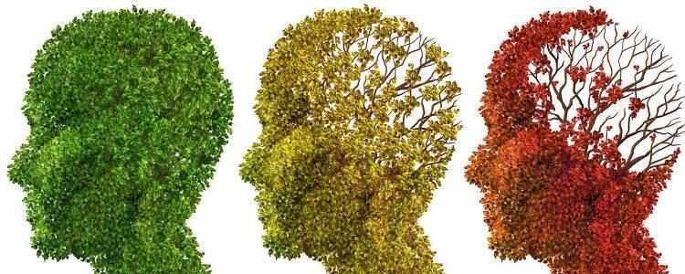 Alzheimer ist saisonabhängig: Demenzsymptome verschlimmern sich im Winter 2