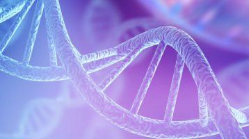 Schlechte Schlafqualität schädigt die DNA