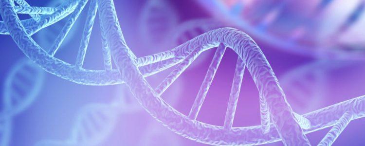 Schlechte Schlafqualität schädigt die DNA 2