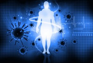 Newly Discovered Immune System Mechanism Links Sleep and Gut Health 2