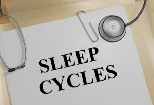 Specialized Immune Cells Maintain Brain During Sleep 1