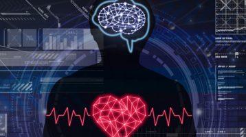 Ein gestörter circadianer Rhythmus wirkt sich auf Körper und Gehirn aus