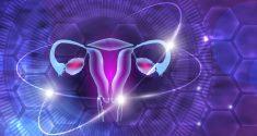 Der circadiane Rhythmus und die Fruchtbarkeit: So vermindert schlechter Schlaf bei Frauen die Fruchtbarkeit 2