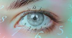 Chronobiology and Sight: How the Eyes Synchronize Our Internal Clocks