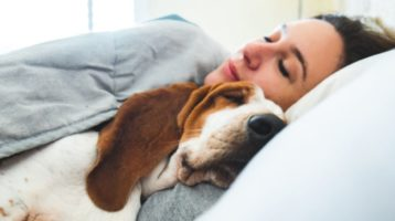 Can Sleeping With Your Pet Be Beneficial?